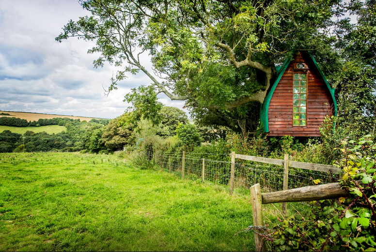 TreeSparrowHouse